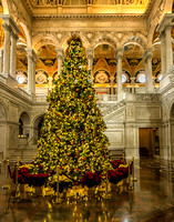 Another photo of the Christmas tree in the Library of Congress.