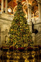 This Christmas tree sits in the Library of Congress. The Library of Congress is an amazing building. The staff did a great job with their tree.