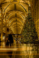 This Christmas tree inspired me to find more beautiful trees in and around the Washington, D.C. area. Throughout the month of December I found 20 gorgeous trees that I wanted to share with you. This g